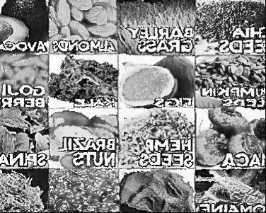 proteines.jpg